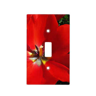 Red Tulips Light Switch Cover