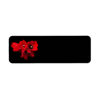 Red Tulips on Black - Customized Tulip Template