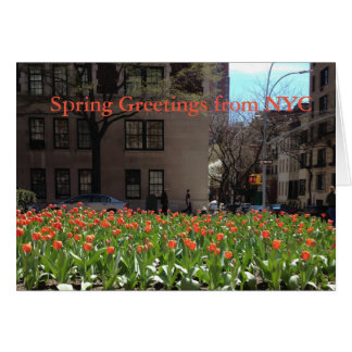 Red Tulips Spring Greetings from NYC card