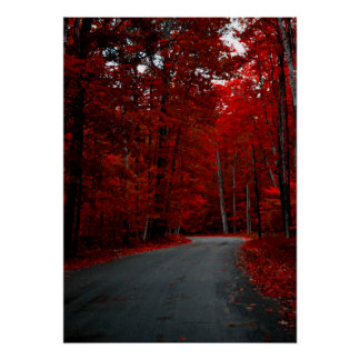Red Tunnel Of Trees Poster