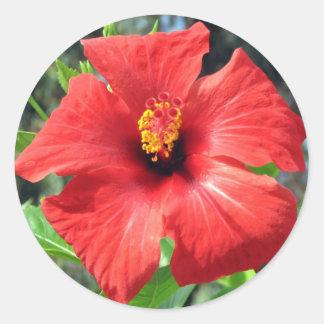 Red Turkish Flower Round Sticker