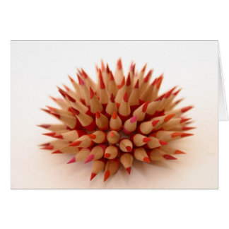 Red urchin card