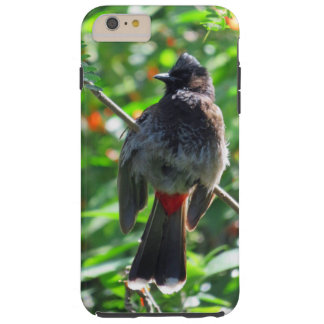 Red-vented Bulbul Tough iPhone 6 Plus Case