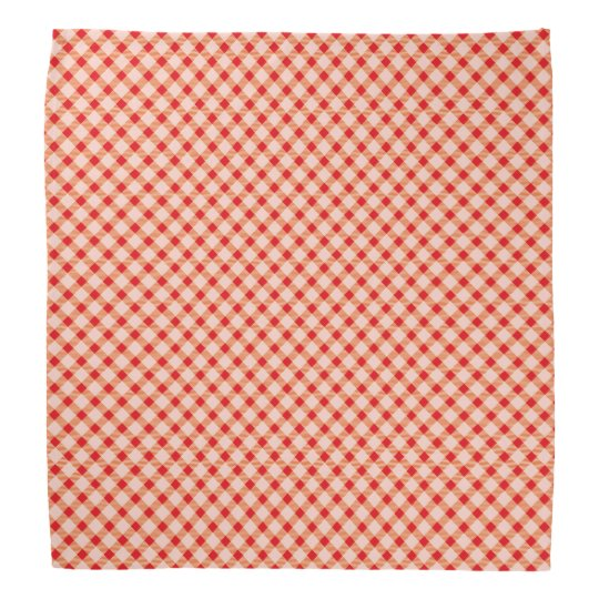 Red vintage gingham bandana