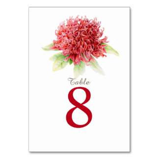 Red waratah watercolor wedding table numbers
