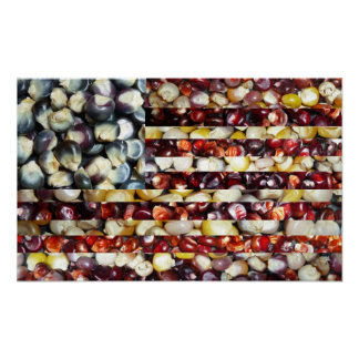 Red, White & Blue Corn American Flag Poster