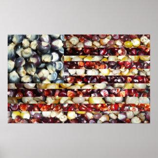 Red, White & Blue Corn American Flag Print