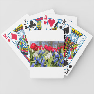Red white blue flowers in spring season bicycle playing cards