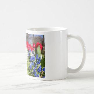 Red white blue flowers in spring season coffee mug