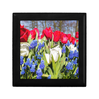 Red white blue flowers in spring season gift box