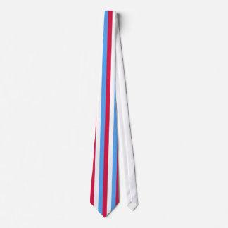 Red, White & Blue Striped Men's Tie