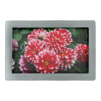 Red & White Dahlias Belt Buckle