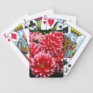Red & White Dahlias Bicycle Playing Cards