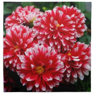 Red & White Dahlias Napkin
