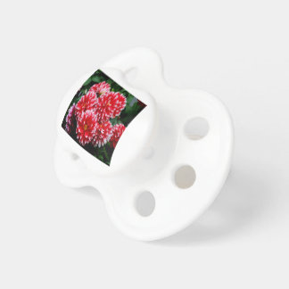 Red & White Dahlias Pacifier