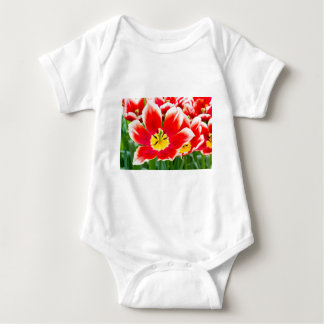 Red white tulip in field of tulips baby bodysuit