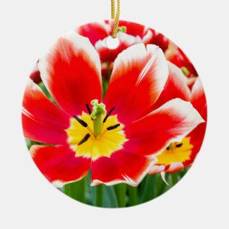 Red white tulip in field of tulips ceramic ornament