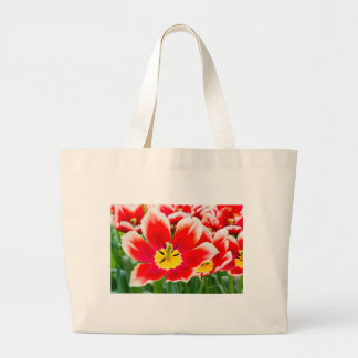 Red white tulip in field of tulips large tote bag