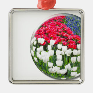 Red white tulips and blue grape hyacinths Silver-Colored square ornament