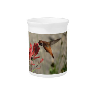 Red wildflower hummingbird pitcher