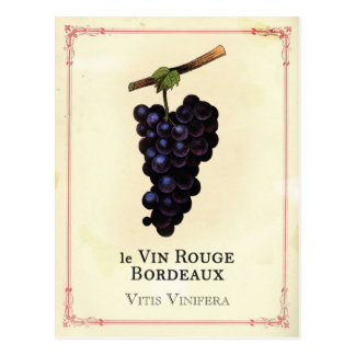 Red Wine Grapes Bordeaux Postcard
