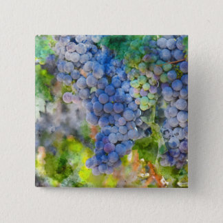 Red Wine Grapes in the Vineyard 2 Inch Square Button