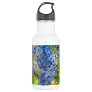 Red Wine Grapes in the Vineyard 532 Ml Water Bottle