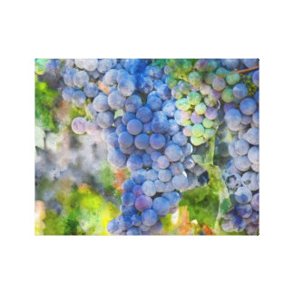 Red Wine Grapes in the Vineyard Canvas Print