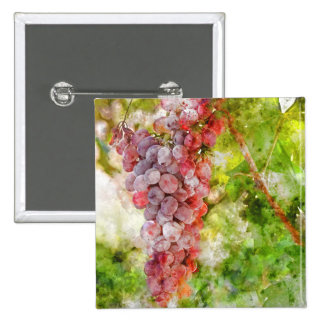 Red Wine Grapes on the Vine 2 Inch Square Button