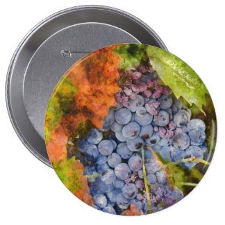 Red Wine Grapes on the Vine 4 Inch Round Button