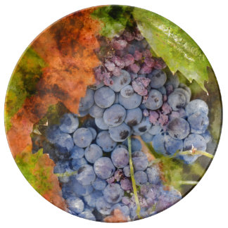 Red Wine Grapes on the Vine Plate