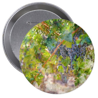 Red Wine Grapes on Vine 4 Inch Round Button