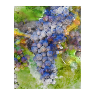 Red Wine Grapes on Vine Acrylic Wall Art