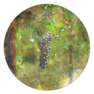 Red Wine Grapes on Vine Dinner Plate