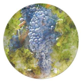 Red Wine Grapes on Vine Dinner Plates