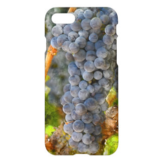 Red Wine Grapes on Vine iPhone 7 Case