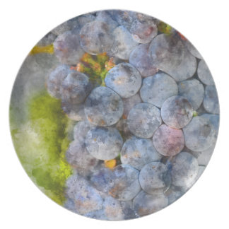 Red Wine Grapes on Vine Party Plate