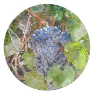 Red Wine Grapes on Vine Party Plates