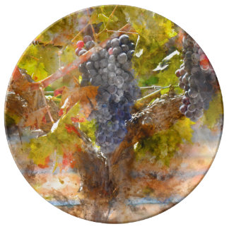 Red Wine Grapes on Vine Plate