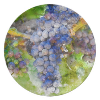 Red Wine Grapes on Vine Plates