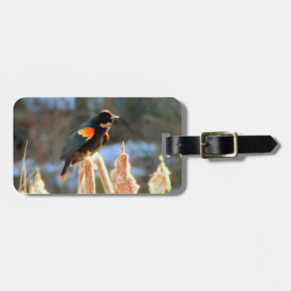 Red Winged Black Bird on Cattail Luggage Tag