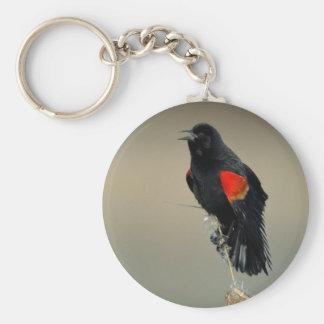 Red-winged Blackbird Basic Round Button Keychain