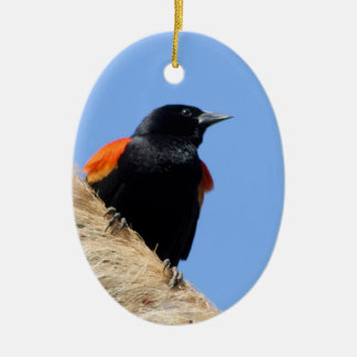 Red-winged Blackbird Ceramic Oval Ornament