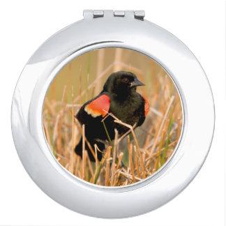 Red-winged Blackbird male singing Travel Mirrors