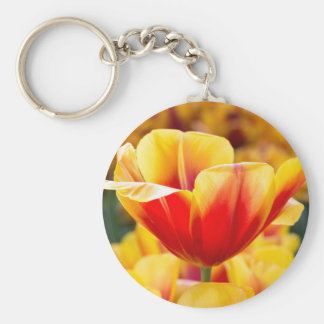 Red with yellow tulip in flowers field basic round button keychain
