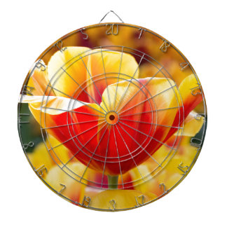 Red with yellow tulip in flowers field dart board