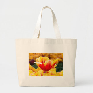 Red with yellow tulip in flowers field large tote bag