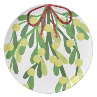 red xmas mistletoe plate