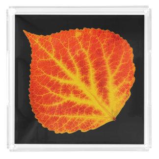 Red & Yellow Aspen Leaf #10 Acrylic Tray