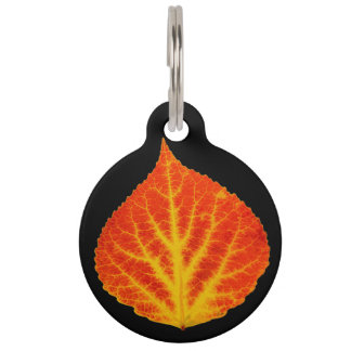 Red & Yellow Aspen Leaf #10 Pet ID Tag